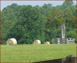 Hay Bales — © 2008 America InContext