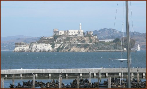 Seals and Alcatraz — © 2008 America In Context