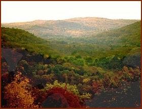 Public domain photo courtesy National Park Service
