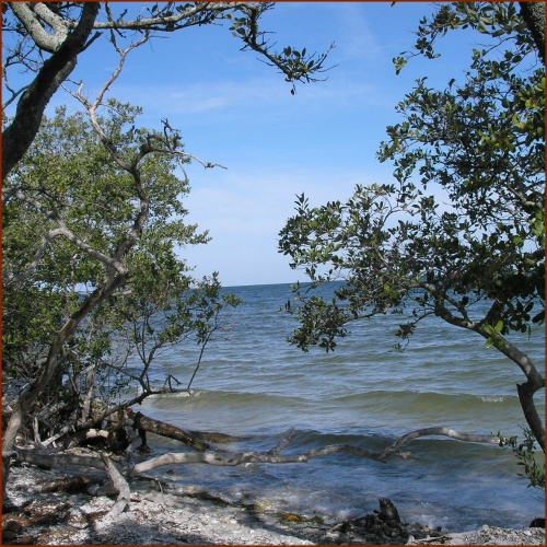 Gulf Coast As It Was